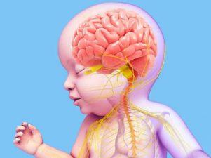 Лучшая еда для детского мозга
