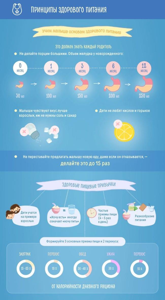 Основы здорового питания для малыша