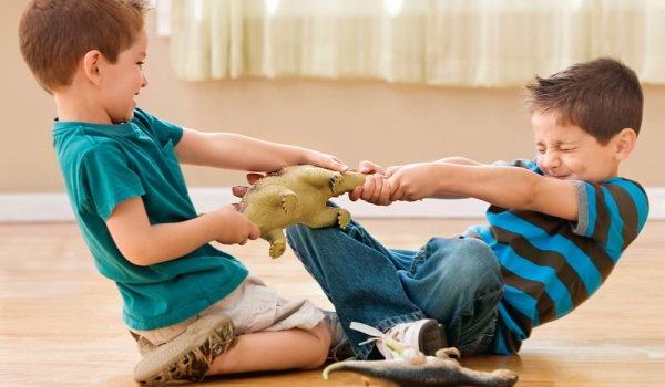 Почему у ребенка не должно быть много игрушек
