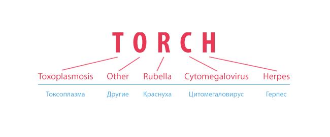 TORCH-инфекции - что это