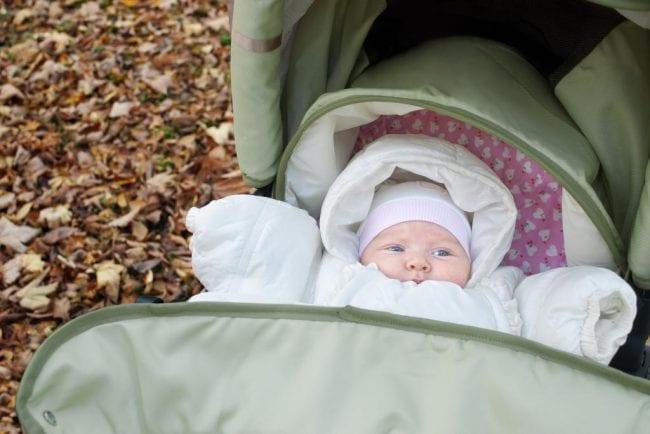 Осенне-весенняя прогулка