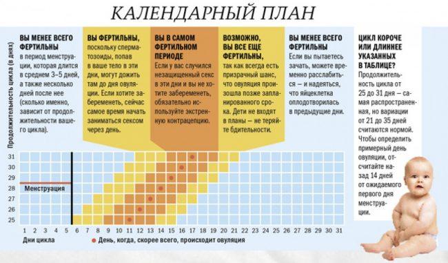 Календарь фертильности