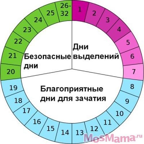Календарь времени для беременности