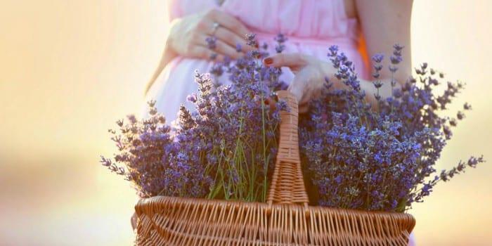 Беременная девушка с корзиной трав