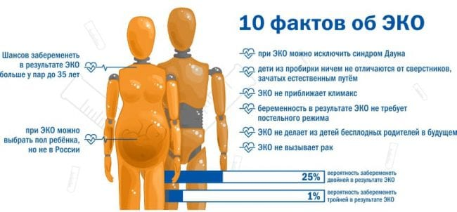 10 фактов об ЭКО