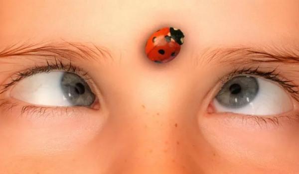 5 распространенных мифов о здоровье глаз вашего ребенка