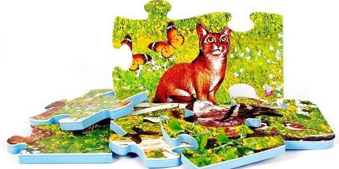 Мир животных от Altacto