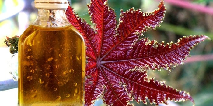Касторовое масло в стеклянной бутылке