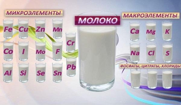 Чем опасно парное молоко