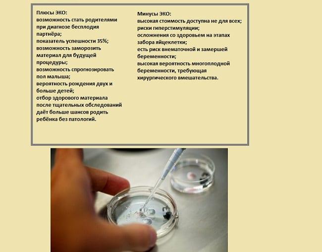Недостатки и преимущества процедуры ЭКО