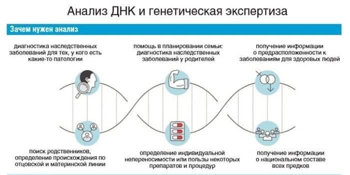 Анализ ДНК при планировании беременности