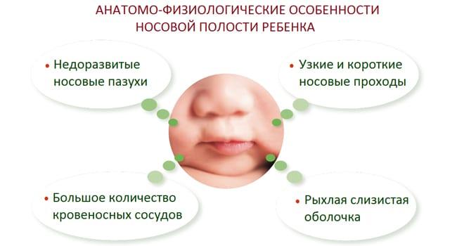 Анатомико-физиологические особенности строения носовой полости новорожденного