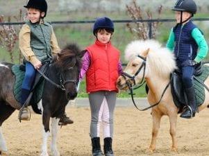 Где покататься на лошади в Москве — адреса и цены клубов