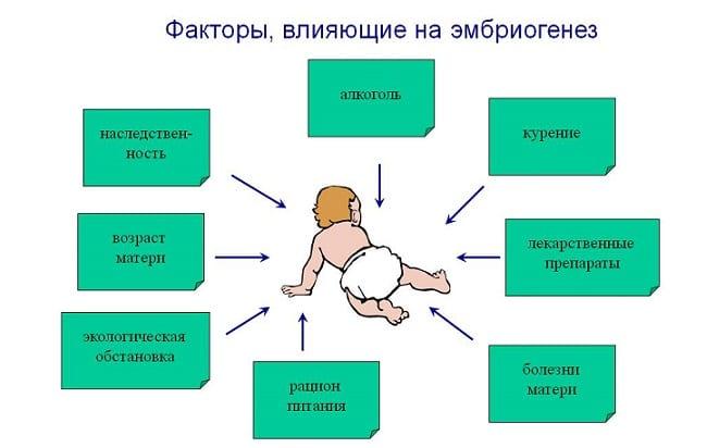 Факторы, влияющие на наступление беременности
