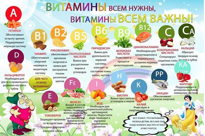 Функции витаминов в организме