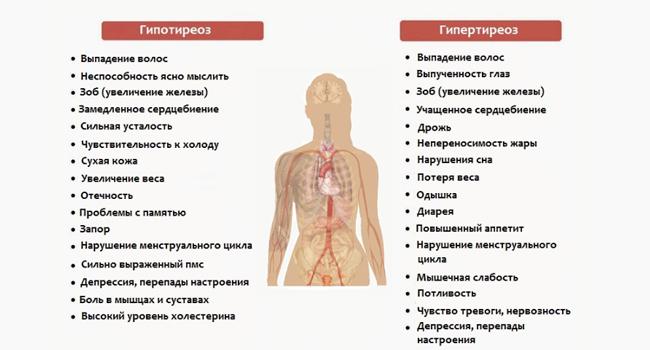 Симптомы гипотериоза и гипертиреоза
