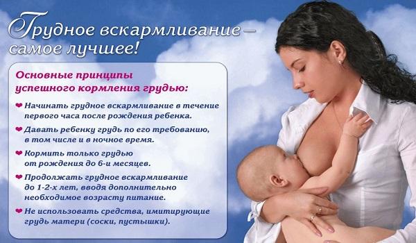 7 плюсов естественного вскармливания ребенка