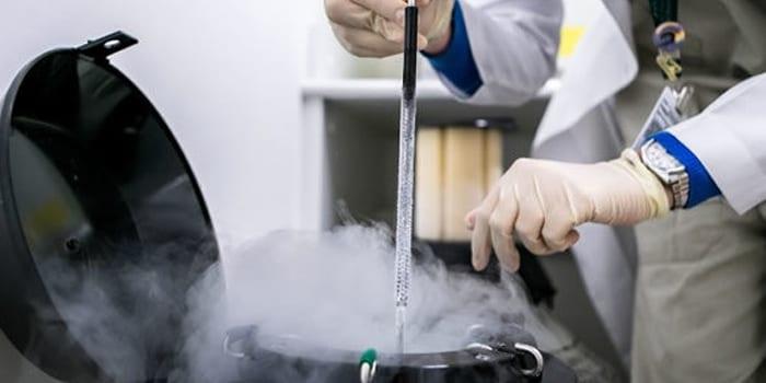 Хранение замороженного эмбриона