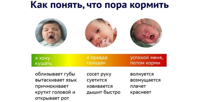 Как понять, что пора кормить малыша