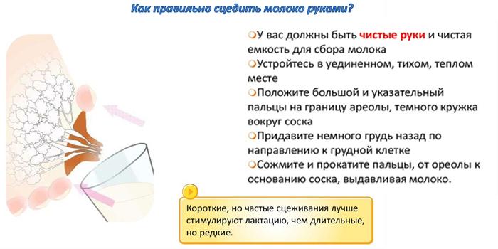 Как правильно сцедить молоко