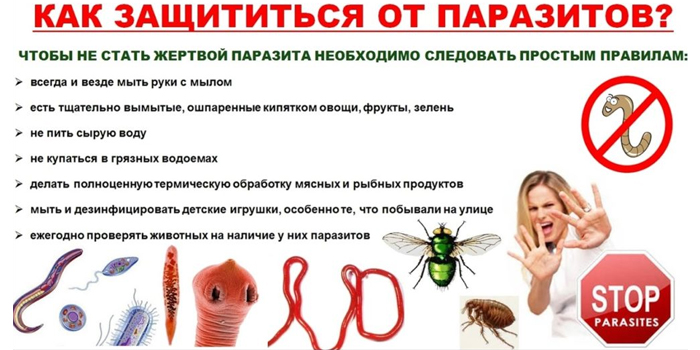 Как защититься от паразитов