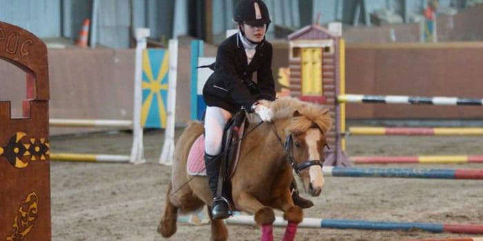 соревнования в конном клубе Сокорос