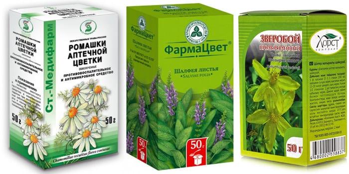 Лекарственные травы для лечения
