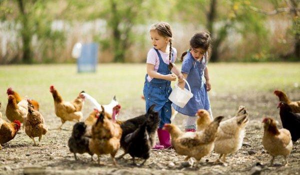 5 советов по воспитанию хороших детей