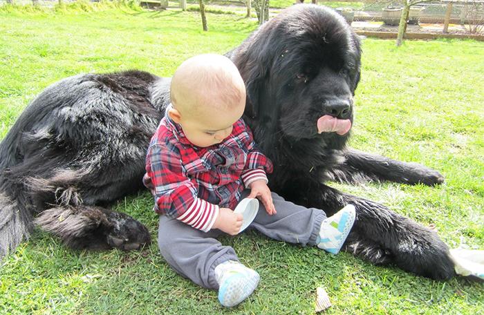 Мальчик и водолаз