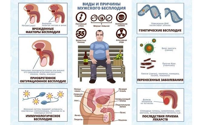 Патологии мужского организма