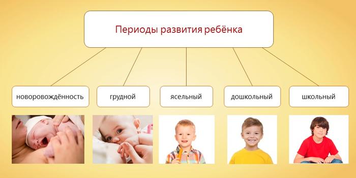 Педагогические периоды развития