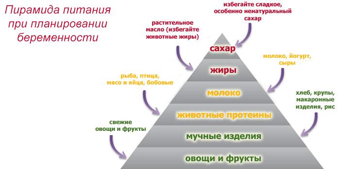 Пирамида питания при планировании беременности