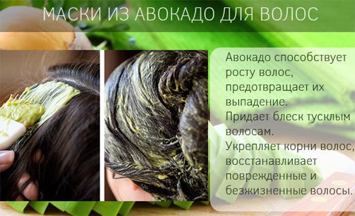 Свойства и польза авокадо