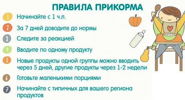 Правила прикорма