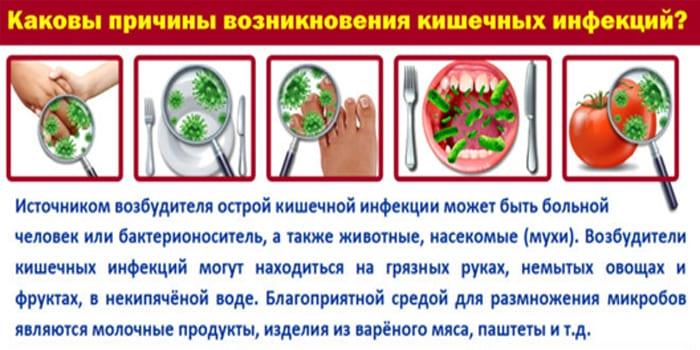 Причины возникновения кишечных инфекций