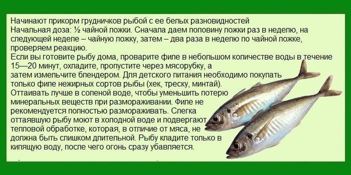 Приготовление рыбы для грудничка