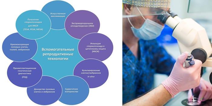 Современные репродуктивные технологии