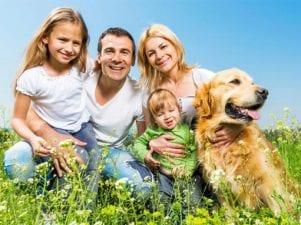 9 больших добрых собак для семьи с детьми