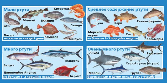 Содержание ртути в рыбе
