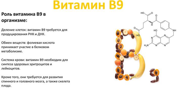 Свойства витамина В9