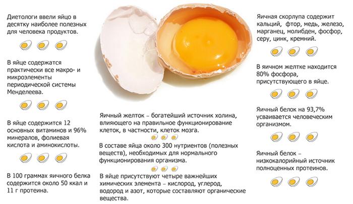 Свойства яиц