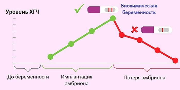 Уровень ХГЧ при биохимической беременности
