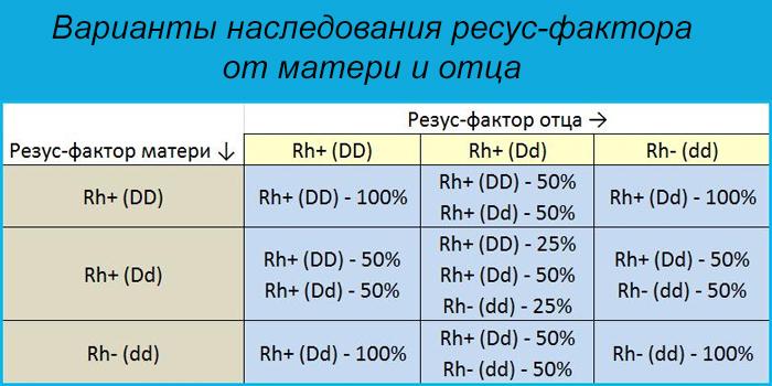 Варианты наследования резус-фактора