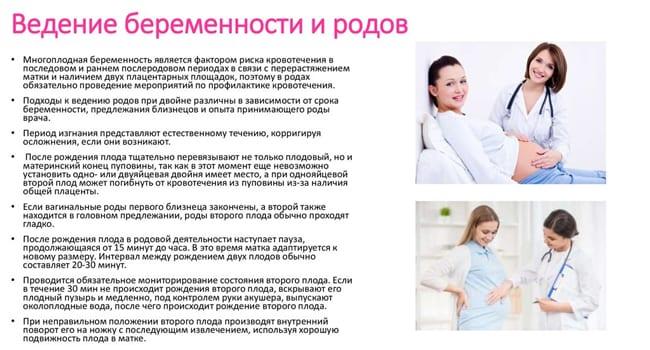 Ведение многоплодной беременности