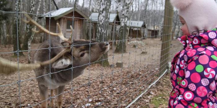 Зоопарк в Орловском