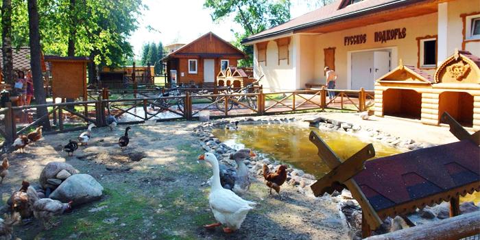 Зоопарк в отеле Яхонты Ногинск